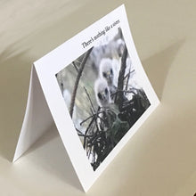 Baby Hawk Greeting Cards, 4 Pack, Bird Gift, Sister Gift, Birdwatcher Gift, Thinking of You, Miss You, #C2