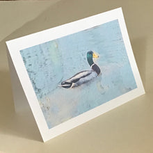 Mallard Duck Card, Greeting Cards, 4 Pack, Wildlife Card, Birdwatcher Gift, Thinking of You, Miss You, Gift, Blank Card #C4