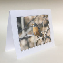 Robin Greeting Cards, 4 Pack, Gift, Birdwatcher Gift, Thinking of You, Miss You,  Nature Gift, Bird Card #C10
