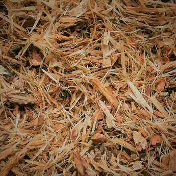 White Oak Bark Cut and Sifted - 454 grams (1 pound)