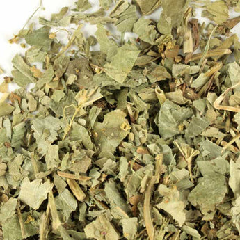Lady's Mantle Cut and Sifted - 114 grams (4 oz)