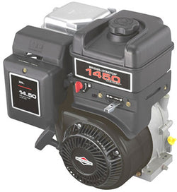 Briggs & Stratton 1450 Series 10 HP Engine - TP3 - Riverside Pumps