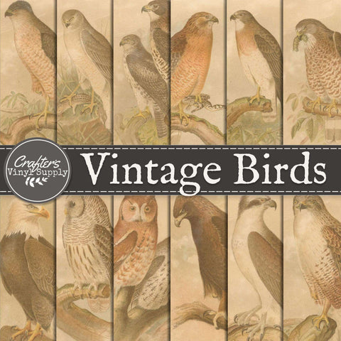 Vintage Bird Patterns