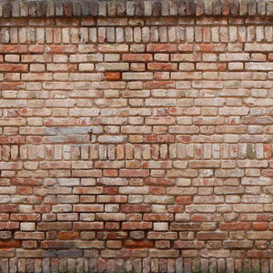 "Crafter's Vinyl Supply Cut Vinyl ORAJET 3651 / 12"" x 12"" Old Painted Brick Wall - Pattern Vinyl and HTV by Crafters Vinyl Supply"