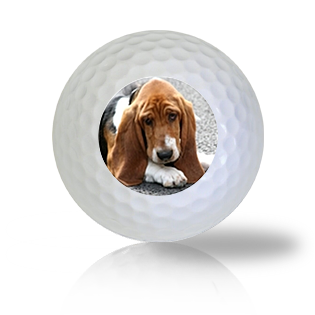 Basset Hound Golf Balls - Half Price Golf Balls - Canada's Source For Premium Used & Recycled Golf Balls