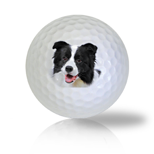 Border Collie Golf Balls - Half Price Golf Balls - Canada's Source For Premium Used & Recycled Golf Balls