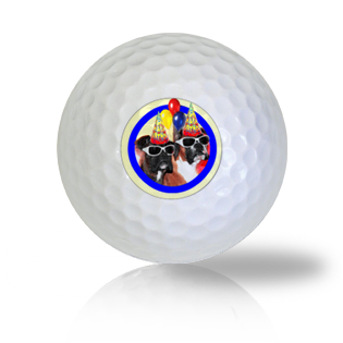 Cute Birthday Boxers in Party Hats Golf Balls - Half Price Golf Balls - Canada's Source For Premium Used & Recycled Golf Balls