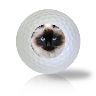 Birman Cat Golf Balls - Half Price Golf Balls - Canada's Source For Premium Used & Recycled Golf Balls