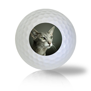 Oriental Cat Golf Balls - Half Price Golf Balls - Canada's Source For Premium Used & Recycled Golf Balls