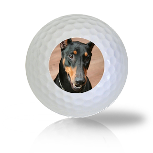 Doberman Golf Balls - Half Price Golf Balls - Canada's Source For Premium Used & Recycled Golf Balls