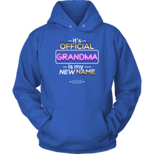 It's Official Hoodie, Grandma is my new name Hoodie