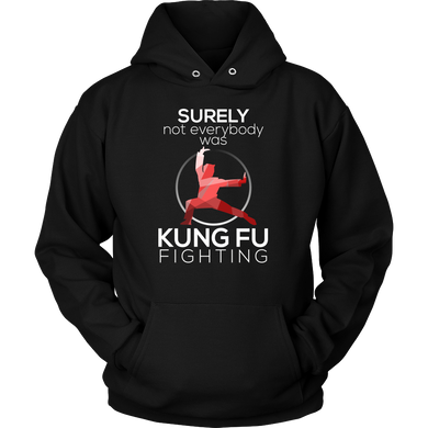 Surely Not Everybody Was Kung Fu Fighting Funny Hoodie