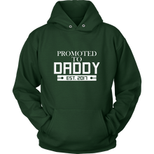 Promoted To Daddy - Est. 2017 Daddy Hoodie