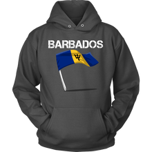 Barbados Graphic Patriotic Vintage Flag Hoodie