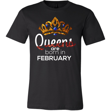 Queens Are Born in February Birthday B-day Gift T-shirt