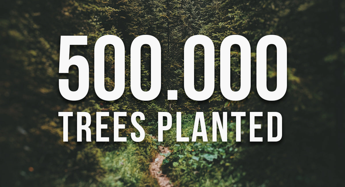 500.00 trees planted