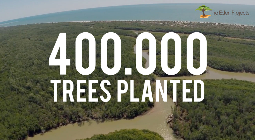 400.000 trees planted