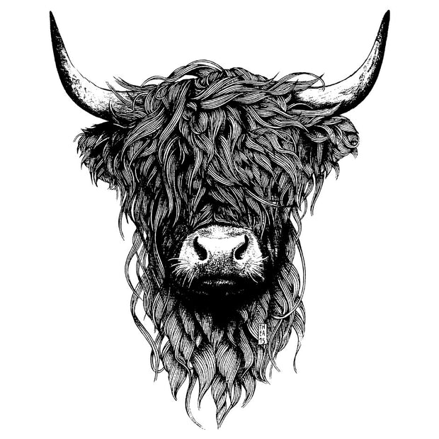 Highland Cattle - Wituka