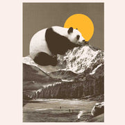 Giant Panda On Mountain