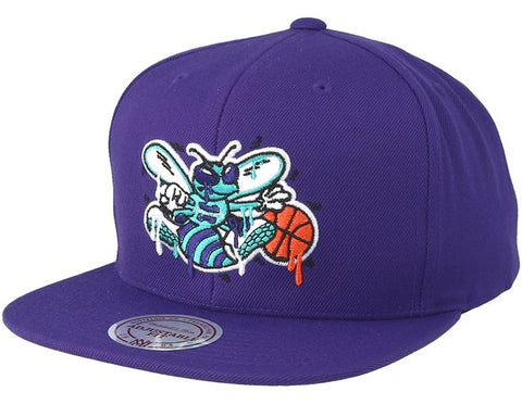 Charlotte Hornets Dripped