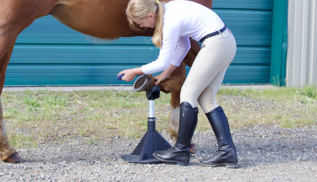 picking your horses feet