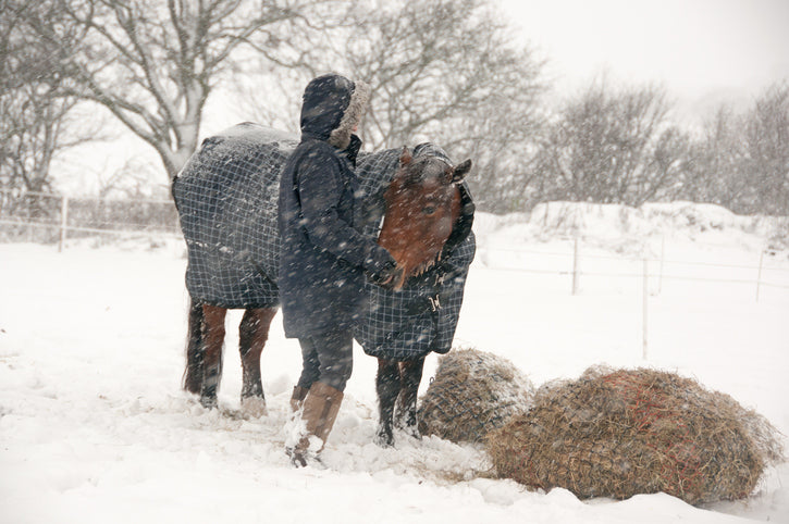 Blanketing your horse in the winter months