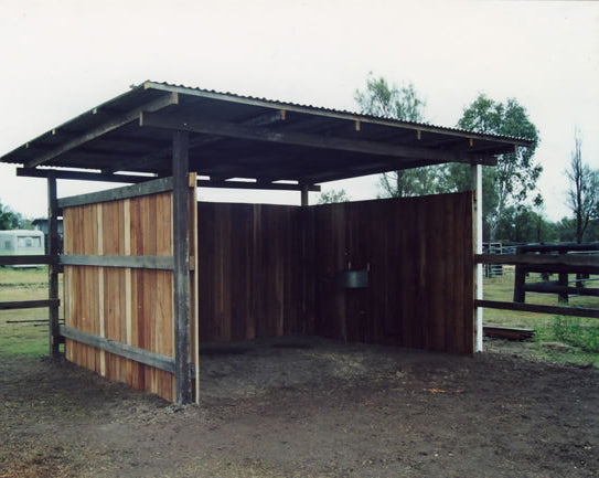 Does your horse really need a shelter?