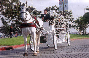 Cinderella Carriage Company