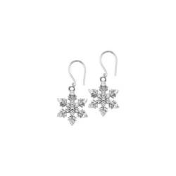 Sterling Silver Diamond Earrings - FE1231