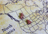 Moose / Elk Map Pin / Tack