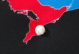 For the Love of the Game - Baseball Fan Push Pin Map of MLB Ballparks