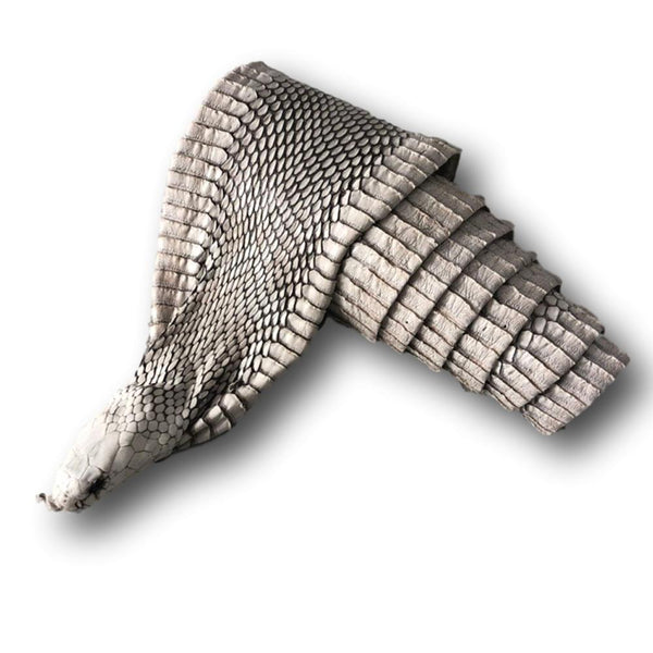 Exotic Full Cobra Snake Skin With Head - Deer Shack