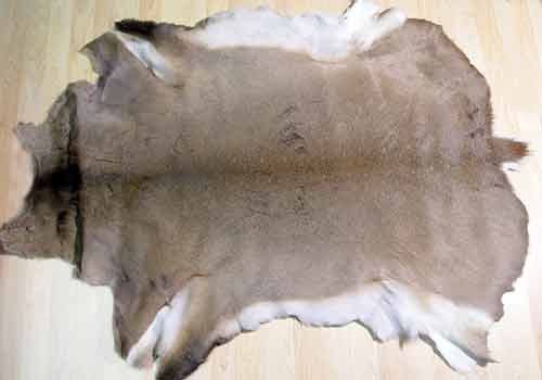 Natural Hair on Deerskin Rug