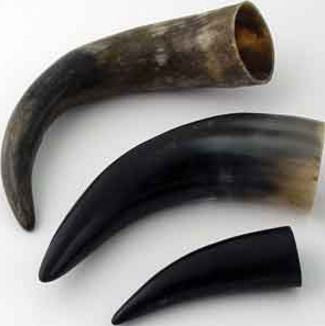 Water Buffalo Horn 10-12 inch Natural