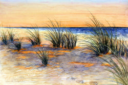 Beach Grass At Sunset Giclee