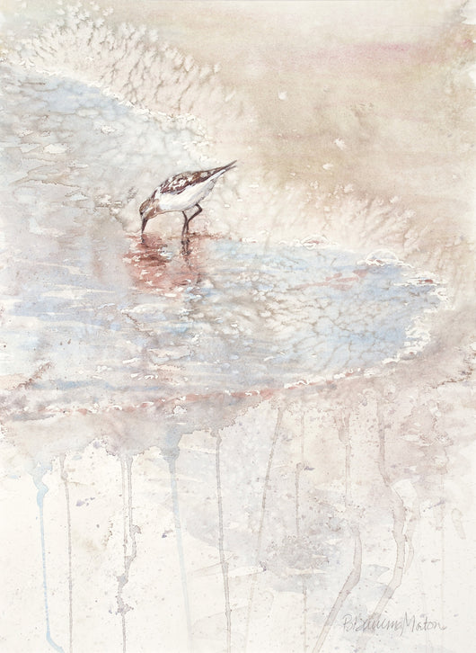 Sand Piper Giclee
