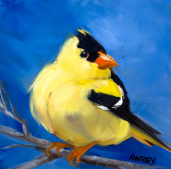 Gold Finch on Blue Giclee