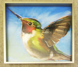 Humming Blue Framed Giclee