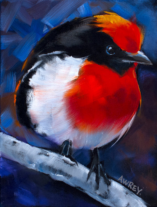 Red and Black Finch Giclee