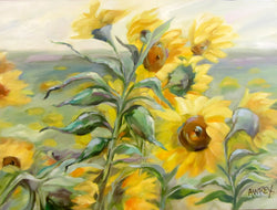 Summer Fields Original Oil Painting