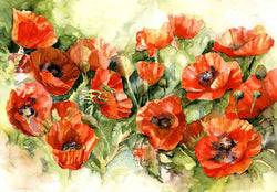 Poppies Grande Giclee