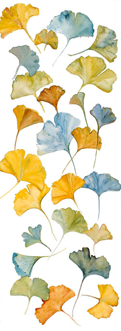 Blue Ginkgos Mini Canvas Giclee Framed