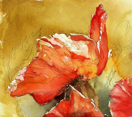 Calligraphy And Poppies Giclee