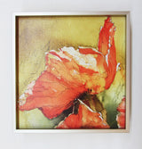 Calligraphy And Poppies Framed Giclee