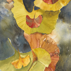 Evening Ginkgo Leaves Squared One Giclee