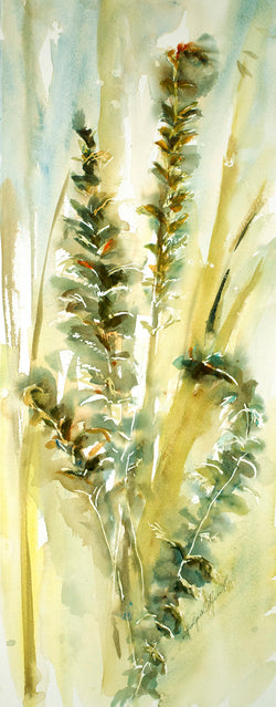 Ostrich Ferns One Original Watercolor Painting