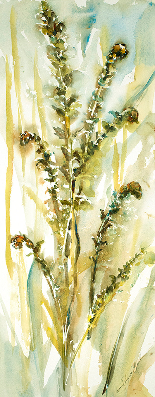 Ostrich Ferns Two Original Watercolor Painting