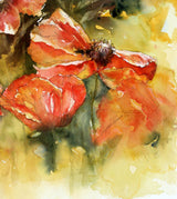 Passion For Poppies Notecards