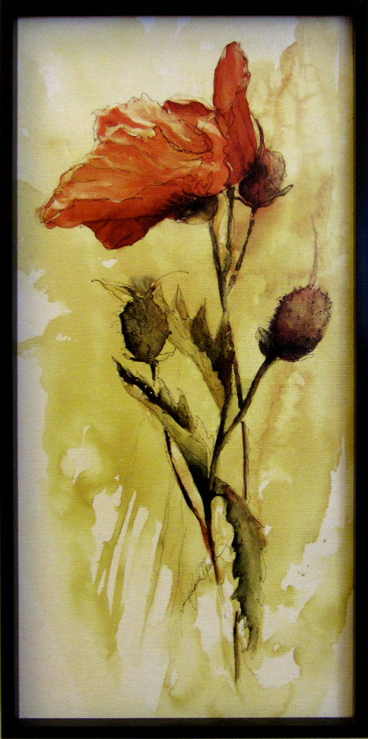 Solo Poppy Giclee Framed 'Canvas With Contemporary Black'