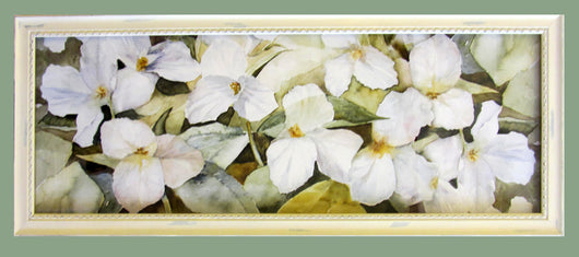 Trillium Panoramic Natural  Giclee Framed 'Country'